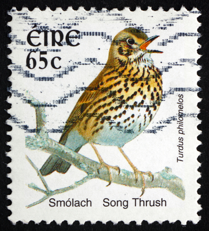 song bird: IRELAND - CIRCA 2004: a stamp printed in Ireland shows Song Thrush, Turdus Philomelos, Bird, circa 2004 Editorial