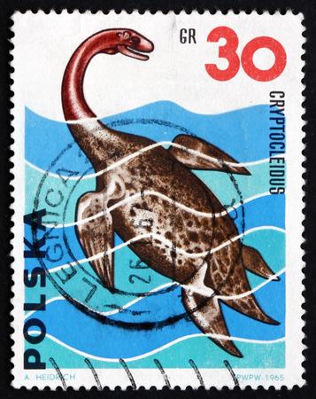 genus: POLAND - CIRCA 1965: a stamp printed in Poland shows Cryptocleidus, was a Genus of Plesiosaur from the Middle Jurrasic Period, Dinosaur, circa 1965