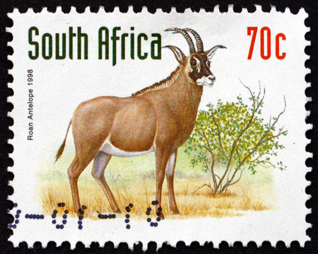 roan: SOUTH AFRICA - CIRCA 1998: a stamp printed in South Africa shows Roan Antelope, Hippotragus Equinus, Savanna Antelope, circa 1998 Editorial