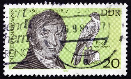 friedrich: GERMANY - CIRCA 1980: a stamp printed in Germany shows Johann Friedrich Naumann, Ornithologist, circa 1980