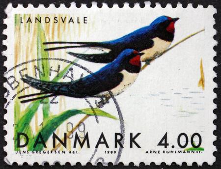hirundo rustica: DENMARK - CIRCA 1999: a stamp printed in Denmark shows Barn Swallows, Hirundo Rustica, Migratory Birds, circa 1999 Editorial