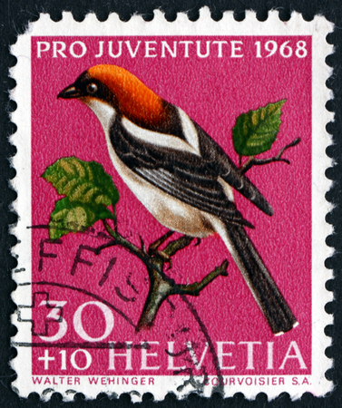 helvetia: SWITZERLAND - CIRCA 1968: a stamp printed in the Switzerland shows Woodchat Shrike, Lanius Senator, Bird, circa 1968