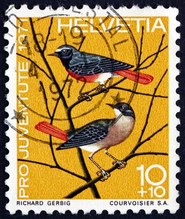 passerine: SWITZERLAND - CIRCA 1971: a stamp printed in the Switzerland shows European Redstart, Phoenicurus Phoenicurus, Small Passerine Bird, circa 1971 Editorial