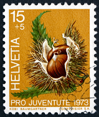 castanea sativa: SWITZERLAND - CIRCA 1973: a stamp printed in the Switzerland shows Chestnut, Castanea Sativa, Fruit of the Forest, circa 1973