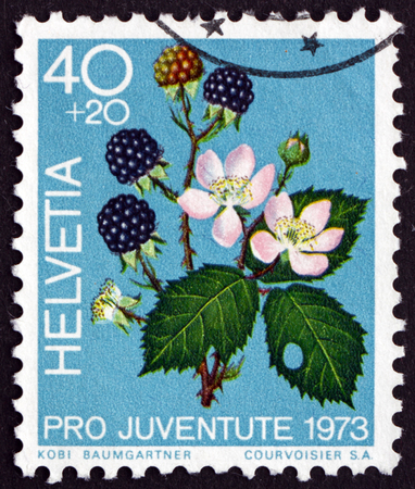 helvetia: SWITZERLAND - CIRCA 1973: a stamp printed in the Switzerland shows Blackberries, Rubus Fruticosus, Fruit of the Forest, circa 1973 Editorial