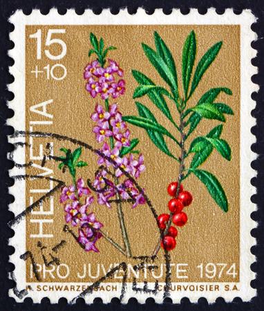 helvetia: SWITZERLAND - CIRCA 1974: a stamp printed in the Switzerland shows Laurel, Laurus Nobilis, Evergreen Tree or Large Shrub, circa 1974