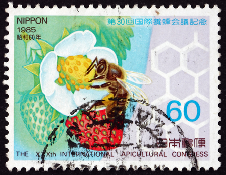 postage stamp: JAPAN - CIRCA 1985: a stamp printed in the Japan shows Honeybee and Strawberry Plants, 30th International Apicultural Congress, Nagoya, circa 1985