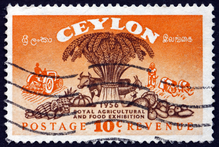 agriculture sri lanka: SRI LANKA - CIRCA 1955: a stamp printed in Sri Lanka shows Symbols of Agriculture, Royal Agricultural and Food Exhibition, circa 1955