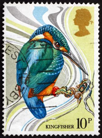 common kingfisher: GREAT BRITAIN - CIRCA 1980: a stamp printed in Great Britain shows Common Kingfisher, Alcedo Atthis, Bird, circa 1980