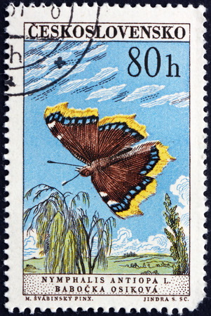 nymphalis: CZECHOSLOVAKIA - CIRCA 1961: a stamp printed in Czechoslovakia shows Mourning Cloak, Nymphalis Antiopa,  is a Large Butterfly native to Eurasia and North America, circa 1961 Editorial