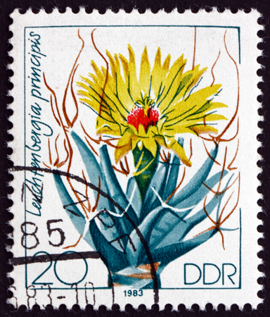 cactus species: GERMANY - CIRCA 1983: a stamp printed in Germany shows Agave Cactus, Leuchtenbergia Principis, is a Species of Cactus, circa 1983