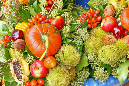 gourds: Fruits of autumn, gourds, chestnuts, apples, hips and green leaves Stock Photo