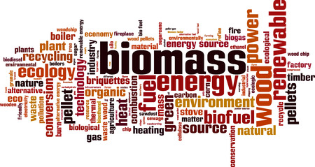 holzbriketts: Biomasse-Wort Cloud-Konzept. Vektor-Illustration