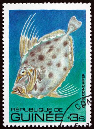 GUINEA - CIRCA 1980: a stamp printed in the Guinea shows Zenopsis Conchifer, Fish, circa 1980