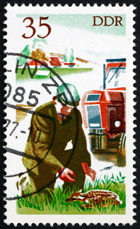 east germany: GERMANY - CIRCA 1977: a stamp printed in Germany shows Tractor Driver Saving Fawn, Hunting in East Germany, circa 1977 Editorial
