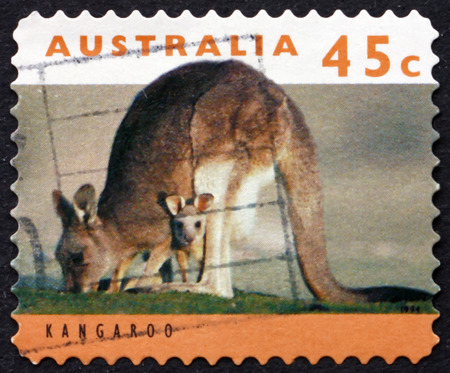 joey: AUSTRALIA - CIRCA 1994: a stamp printed in Australia shows Adult Kangaroo with Joey, circa 1994 Editorial