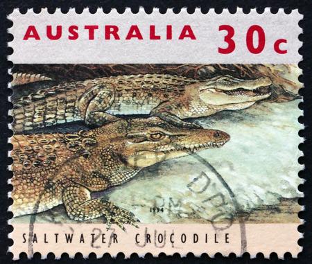 crocodylus: AUSTRALIA - CIRCA 1994: a stamp printed in Australia shows Saltwater Crocodile, Crocodylus Porosus, Threatened Species, circa 1994 Editorial