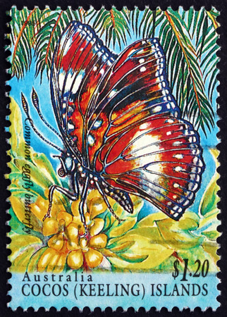 COCOS ISLANDS - CIRCA 1995: a stamp printed in Cocos Islands, Australia shows Common Eggfly Butterfly, Hypolimnas Bolina, Insect, circa 1995 Editorial