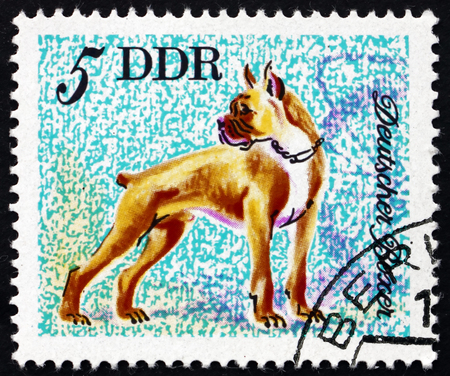 GERMANY - CIRCA 1976: a stamp printed in Germany shows Boxer, Breed of Dog, Animal, circa 1976 Editorial