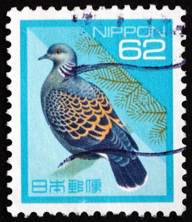JAPAN - CIRCA 1992 a stamp printed in Japan shows Rufous Turtle Dove, Streptopelia Orientalis, Bird, circa 1992