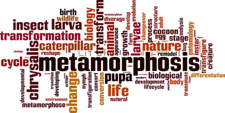 metamorphosis: Metamorphosis word cloud concept. Vector illustration