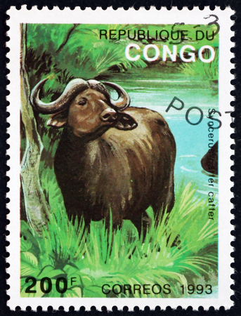CONGO - CIRCA 1993: a stamp printed in Congo shows African Buffalo, Syncerus Caffer, is a Large African Bovine, circa 1993