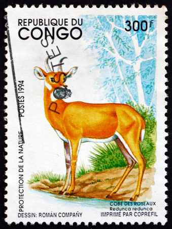 CONGO - CIRCA 1994: a stamp printed in Congo shows Bohor Reedbuck, Redunca Redunca, an Antelope Native to Central Africa, circa 1994 Editorial