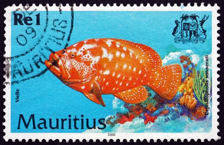 poststempel: MAURITIUS - CIRCA 2000: einen Stempel in Mauritius gedruckt zeigt Tomate Hinter, cephalopholis sonnerati, ist eine Art von Meeres tropische Fische, circa 2000