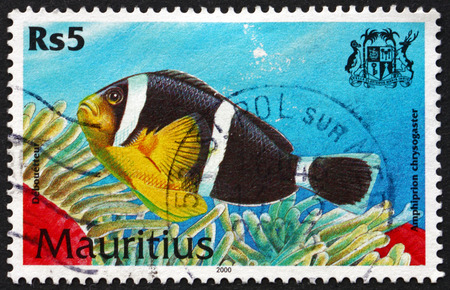 MAURITIUS - CIRCA 2000: a stamp printed in Mauritius shows Mauritian anemonefish, amphiprion chrysogaster, is a species of marine tropical fish, circa 2000 Editorial