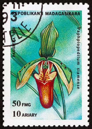 MALAGASY - CIRCA 1993: a stamp printed in Malagasy, Madagascar shows Venus slipper, paphiopedilum siamense, orchid, circa 1993