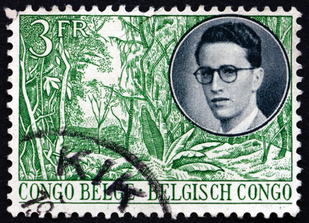 commemorate: BELGIAN CONGO - CIRCA 1955: a stamp printed in Belgian Congo shows King and view of forest, circa 1942