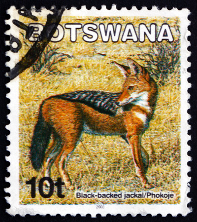 BOTSWANA - CIRCA 2002: a stamp printed in Botswana shows Black-backed jackal, canis mesomelas, animal, circa 2002