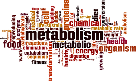 Metabolism word cloud concept. Vector illustration