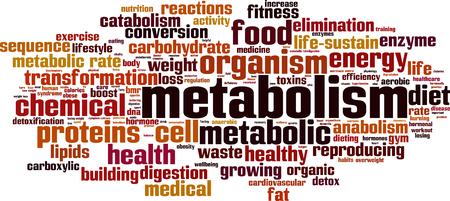 Metabolism word cloud concept. Vector illustration