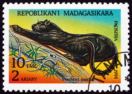 MALAGASY - CIRCA 1995: a stamp printed in Malagasy, Madagascar shows Leopard, Panthera Pardus, Animal, circa 1995 Editorial