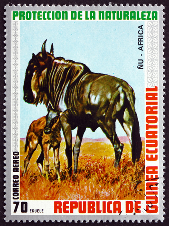 EQUATORIAL GUINEA - CIRCA 1974: a stamp printed in Equatorial Guinea shows Blue Wildebeest, Connochaetes Taurinus, Animal, circa 1974