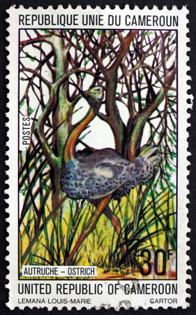 philately: CAMEROON - CIRCA 1977: a stamp printed in Cameroon shows Ostrich, Struthio Camelus, bird, circa 1977 Editorial