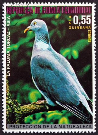 EQUATORIAL GUINEA - CIRCA 1976: a stamp printed in Equatorial Guinea shows Wood Pigeon, Columba Palumbus, Asian Bird, circa 1976