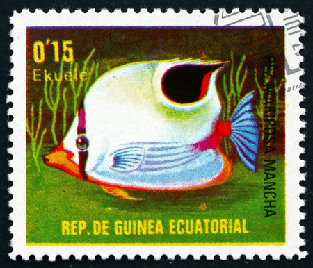 chaetodon: EQUATORIAL GUINEA - CIRCA 1979: a stamp printed in Equatorial Guinea shows Spotfin Butterflyfish, Chaetodon Ocellatus, Fish, circa 1976