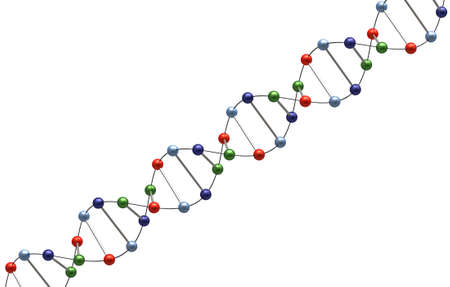 cromosoma: 3d Render of DNA isolated on white background