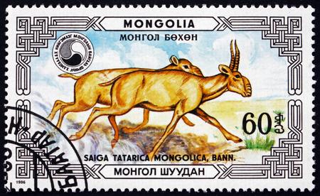 MONGOLIA - CIRCA 1986: a stamp printed in Mongolia shows Saiga Antelope, Saiga Tatarica Mongolica, Buck and Doe, Saiga Antelope is Critically Endangered, circa 1986
