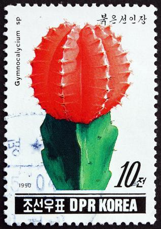 perforated: NORTH KOREA - CIRCA 1990: a stamp printed in North Korea shows Gymnocalycium sp., Cactus, circa 1990