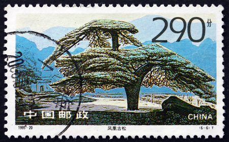 CHINA, PEOPLE�S REPUBLIC OF - CIRCA 1995: a stamp printed in the China shows Old Pine Looks like a Phoenix, Tree, circa 1995