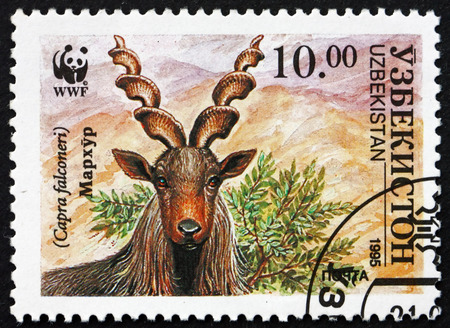 UZBEKISTAN - CIRCA 1995: a stamp printed in Uzbekistan shows Markhor, Capra Falconeri, Screw Horn Goat, Wildlife, circa 1995 Editöryel