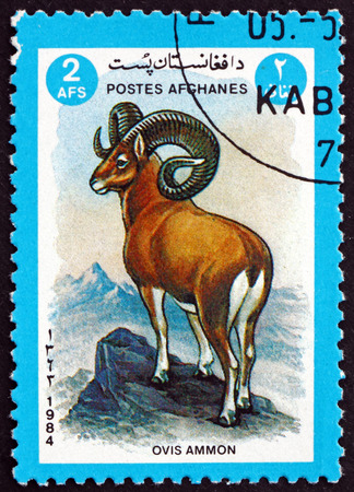 AFGHANISTAN - CIRCA 1984: a stamp printed in Afghanistan shows argali sheep, ovis ammon, is a wild sheep that roams the highlands of Central Asia, circa 1984