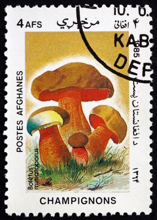AFGHANISTAN - CIRCA 1985: a stamp printed in Afghanistan shows boletus miniatoporus, mushroom, circa 1985