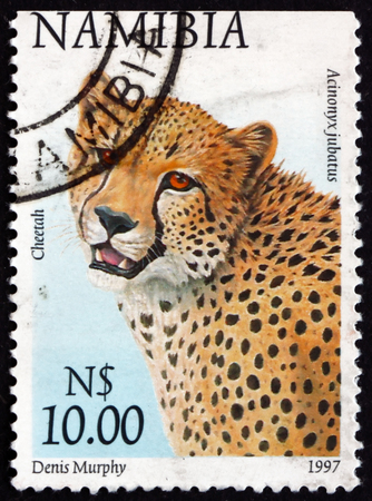 NAMIBIA - CIRCA 1997: a stamp printed in Namibia shows cheetah, acinonyx jubatus, animal, circa 1997 Editorial