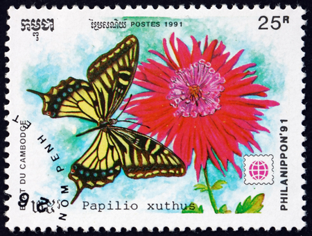 CAMBODIA - CIRCA 1991: a stamp printed in Cambodia shows Asian swallowtail, papilio xuthus, butterfly, circa 1991