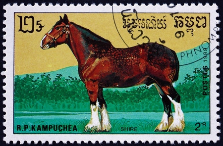 CAMBODIA - CIRCA 1989: a stamp printed in Cambodia shows shire, is a British breed of draught horse, circa 1989 Editorial
