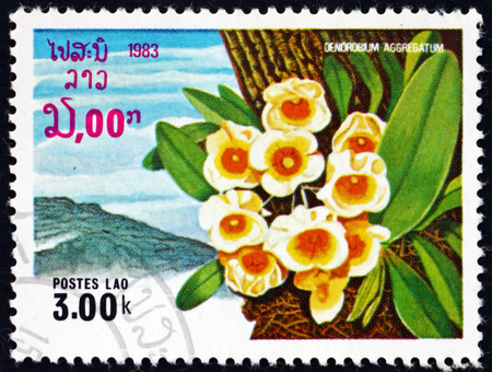 LAOS - CIRCA 1983: a stamp printed in Laos shows dendrobium aggregatum, orchid, circa 1983